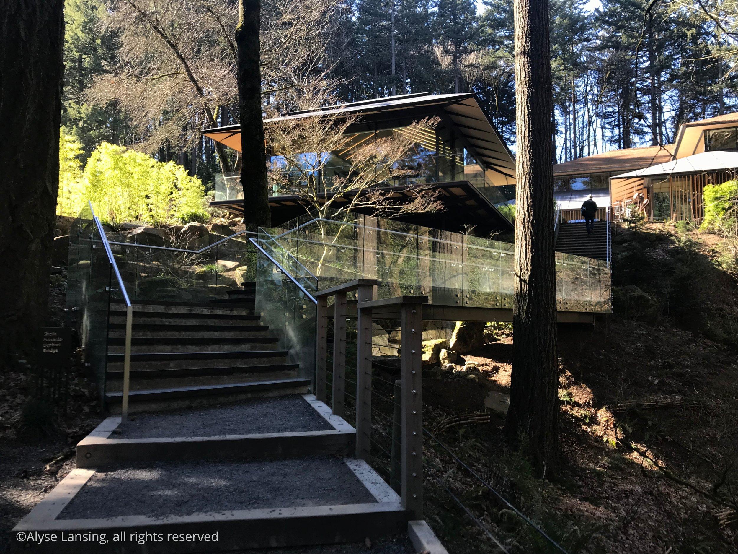 2017-03-04__1500-wide - 17- bridge (transition).jpg