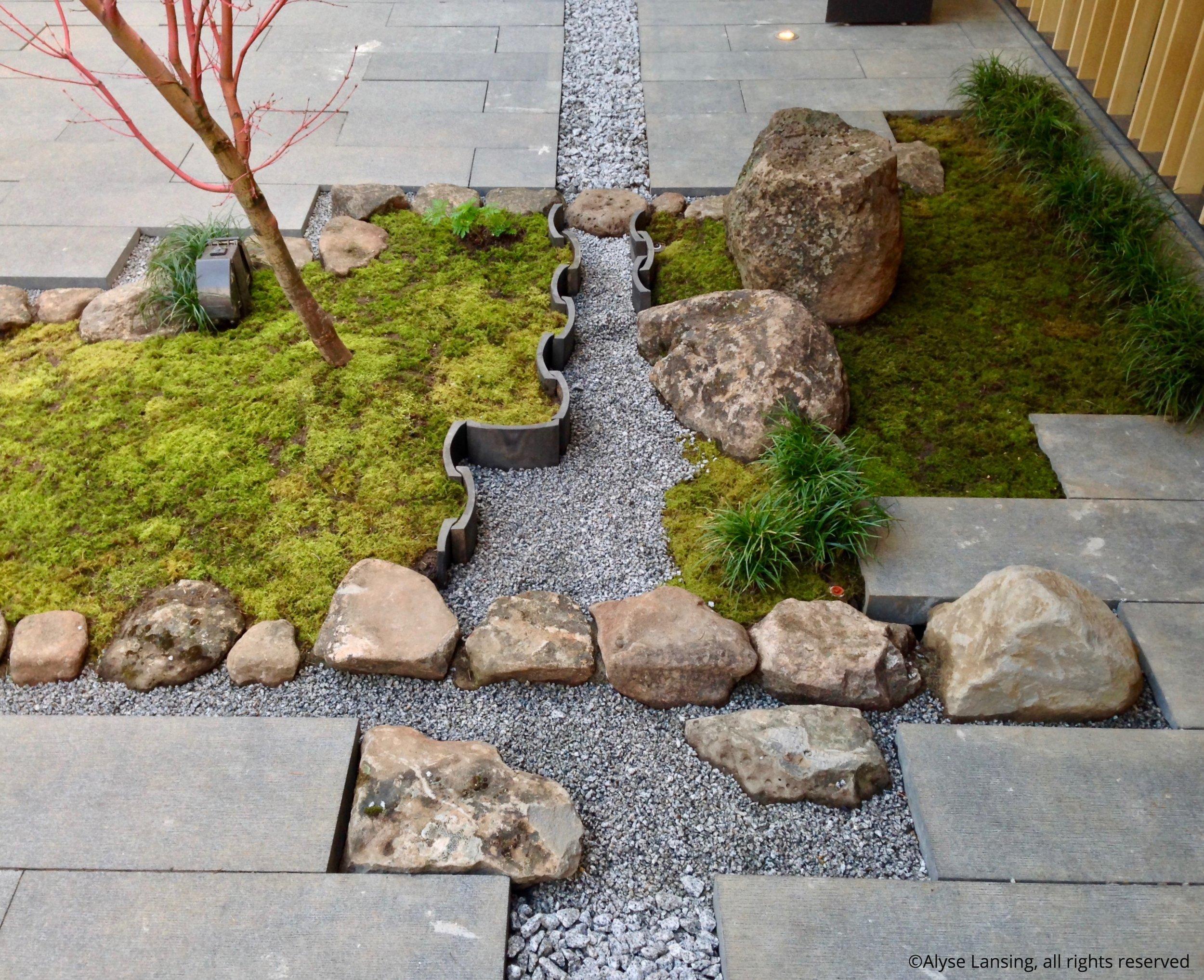 Tiny garden, and drainage!