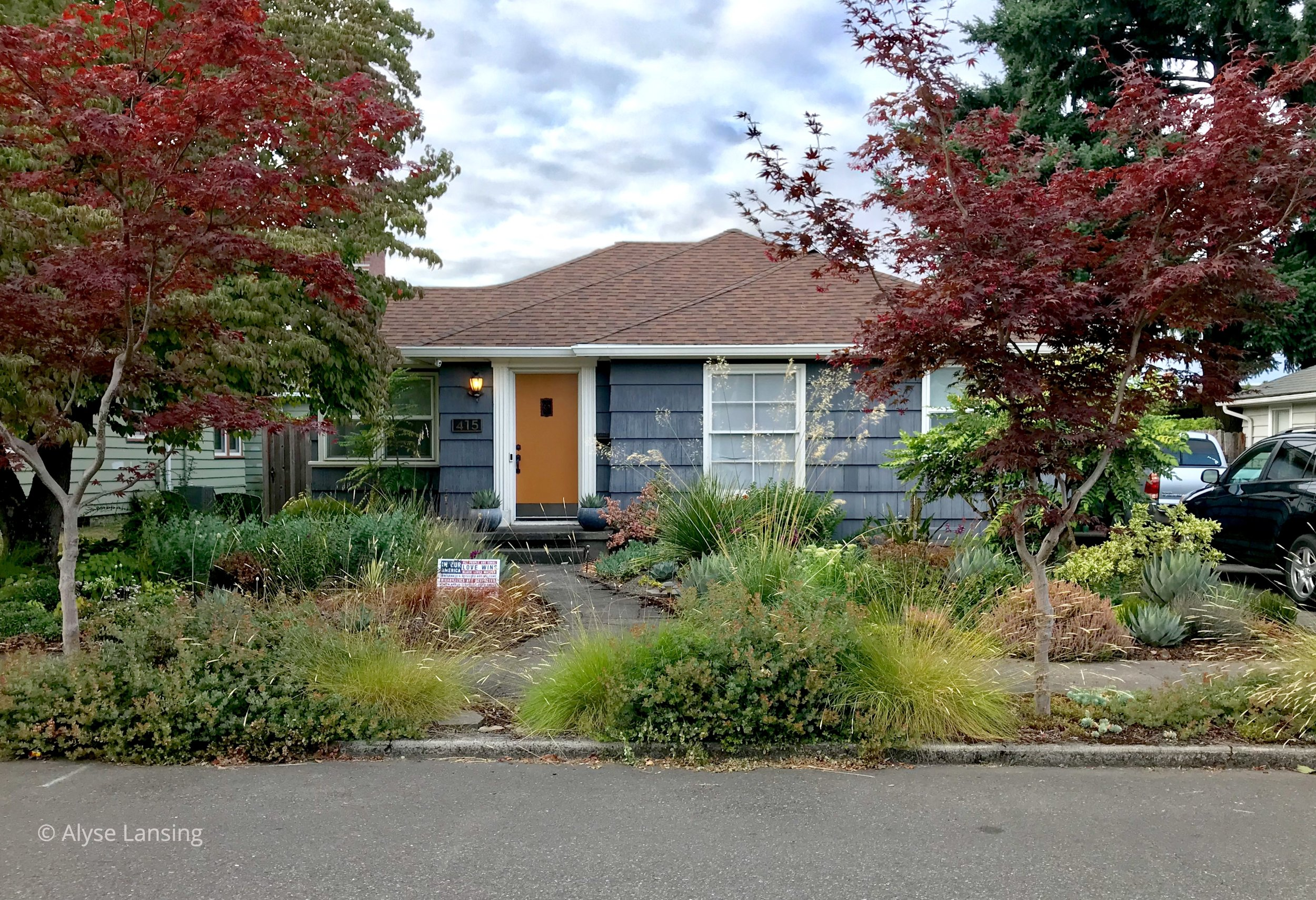 """The main """"forms and masses"""" Heather uses in the front are: low plants in the middle to maintain the focal point front door; and taller plants to the side, in a sweet frame of the house. A rain garden is on the right, between the driveway and front door."""
