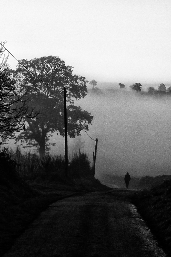 Fog6.jpg