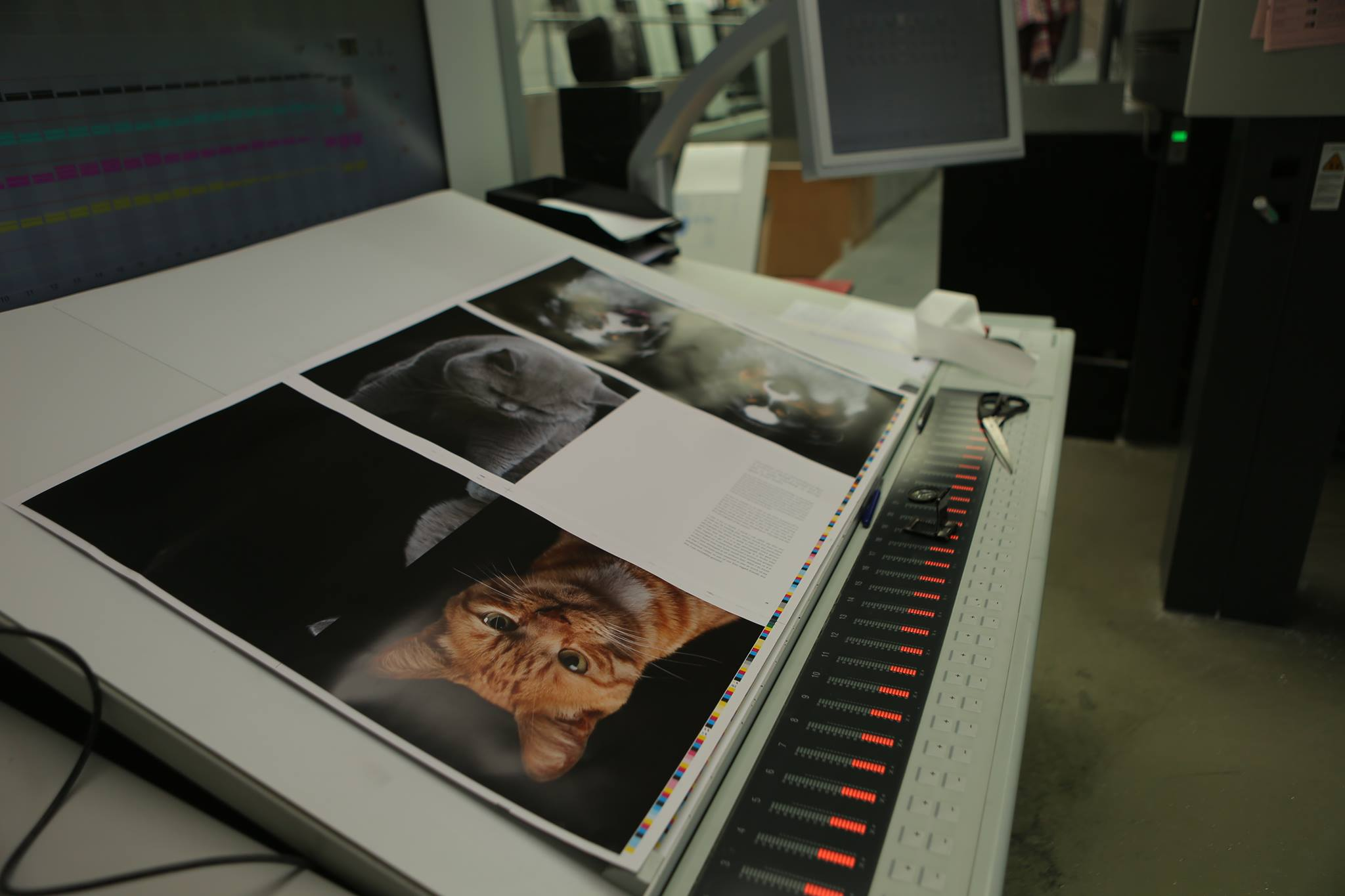 Animal Soul being printed in Belgium. April 19 2016.