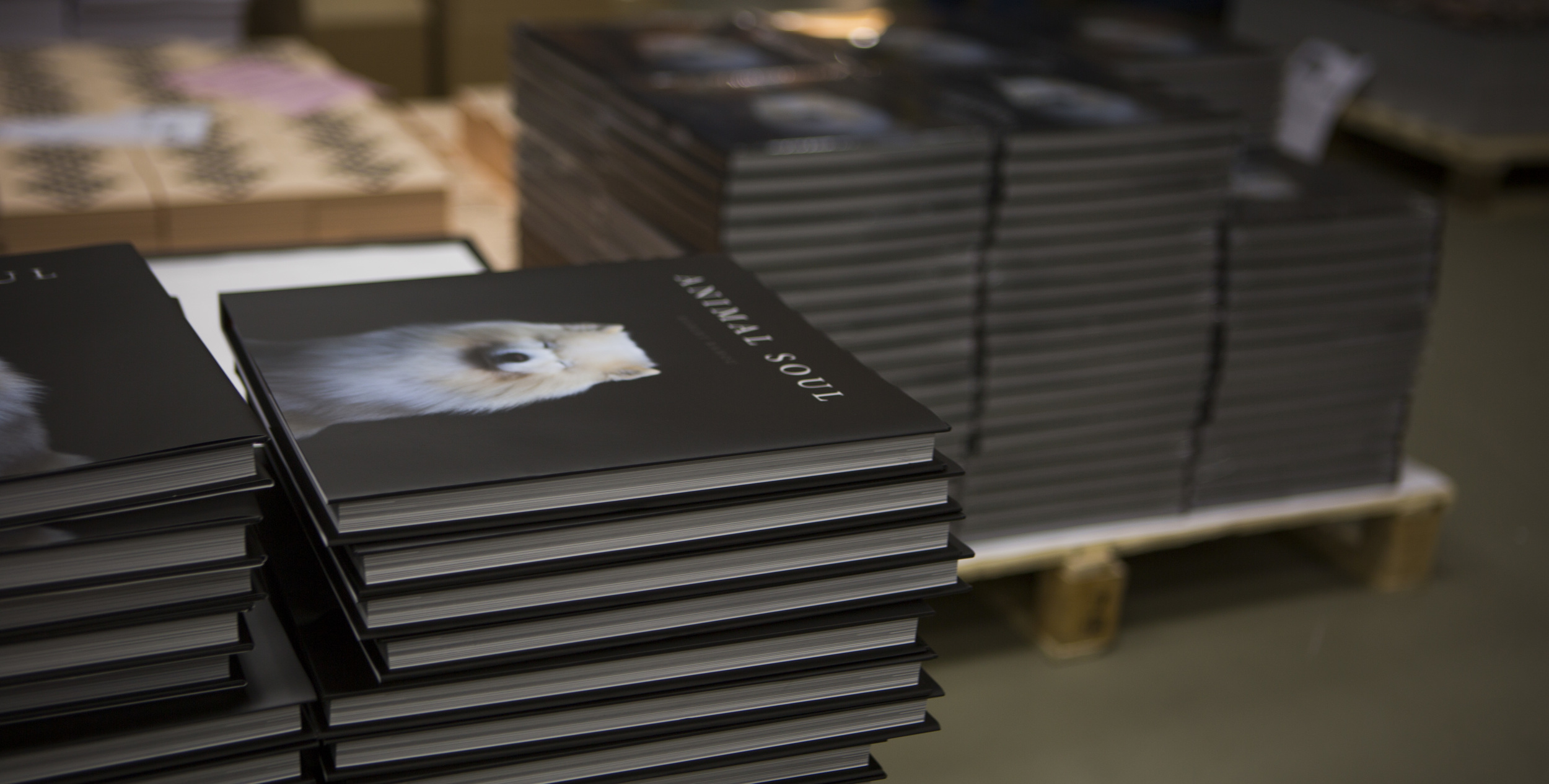 Copies of Animal Soul being prepared for shipping in Belgium.
