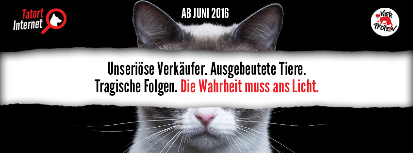 Four-Paws-Facebook-Cover-German_v01-CatCat.jpg