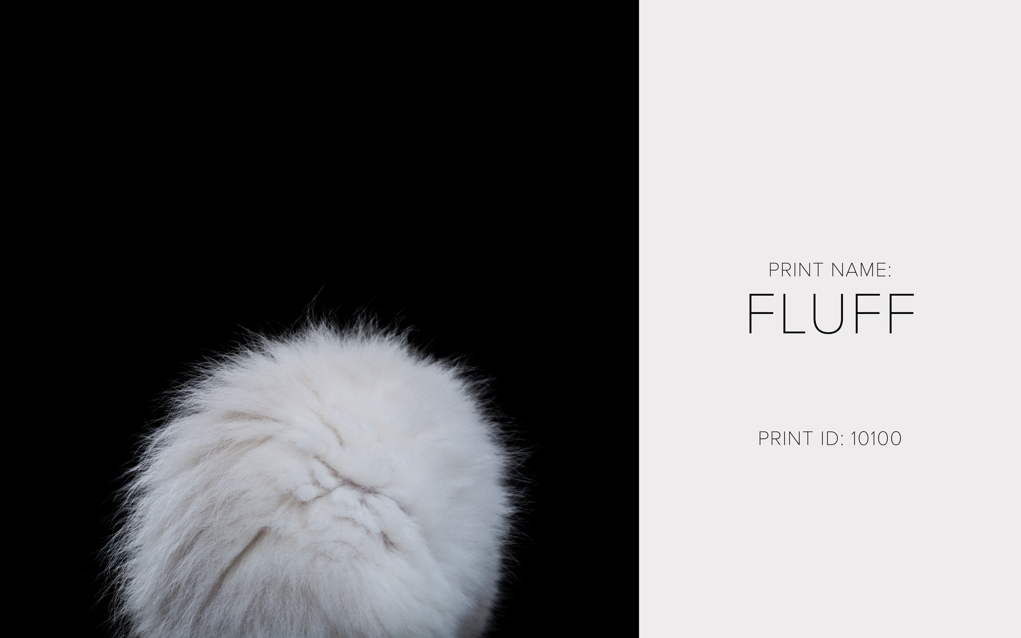 Fluff_Thumb.jpg