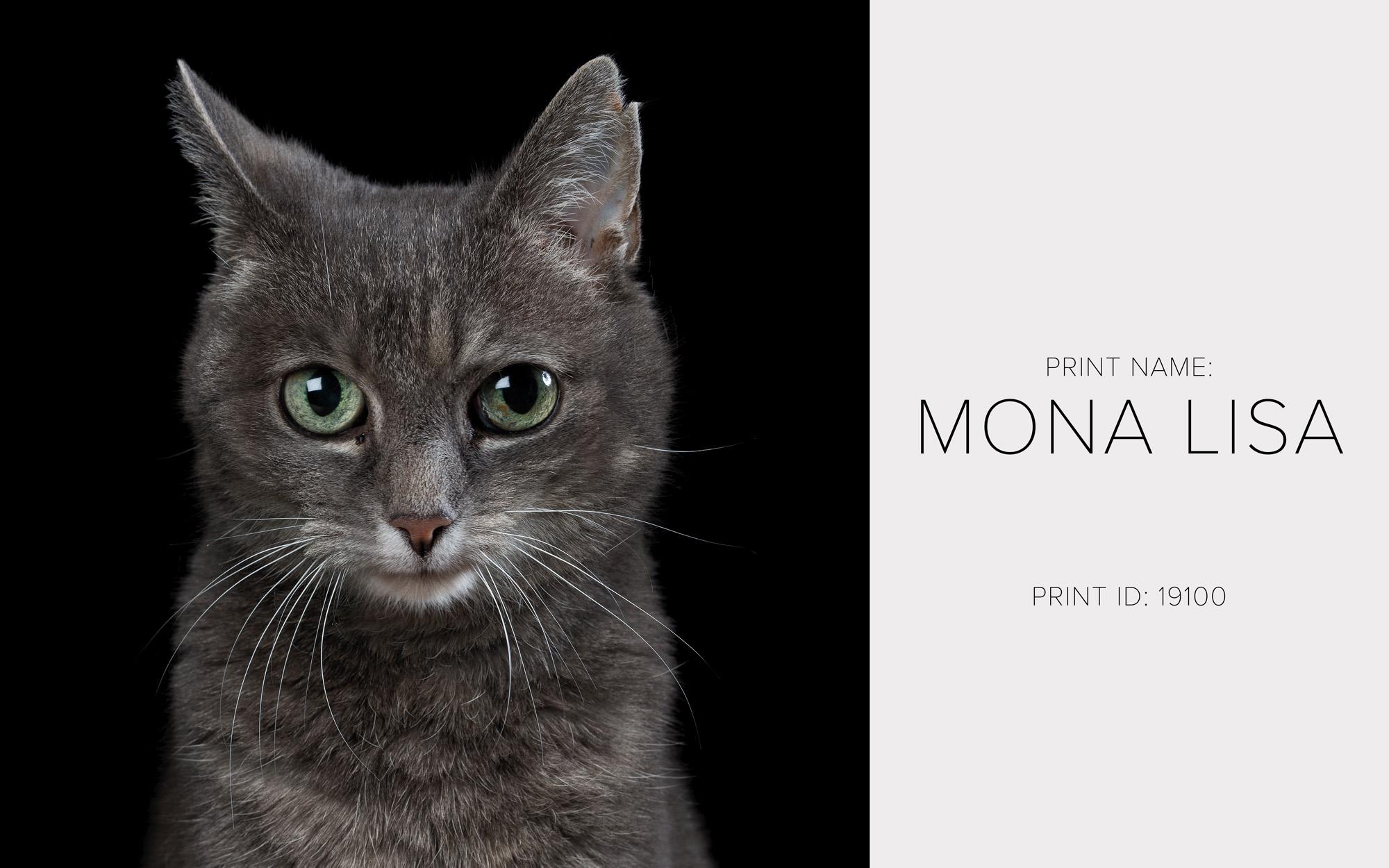 Mona LIsa_Thumb.jpg