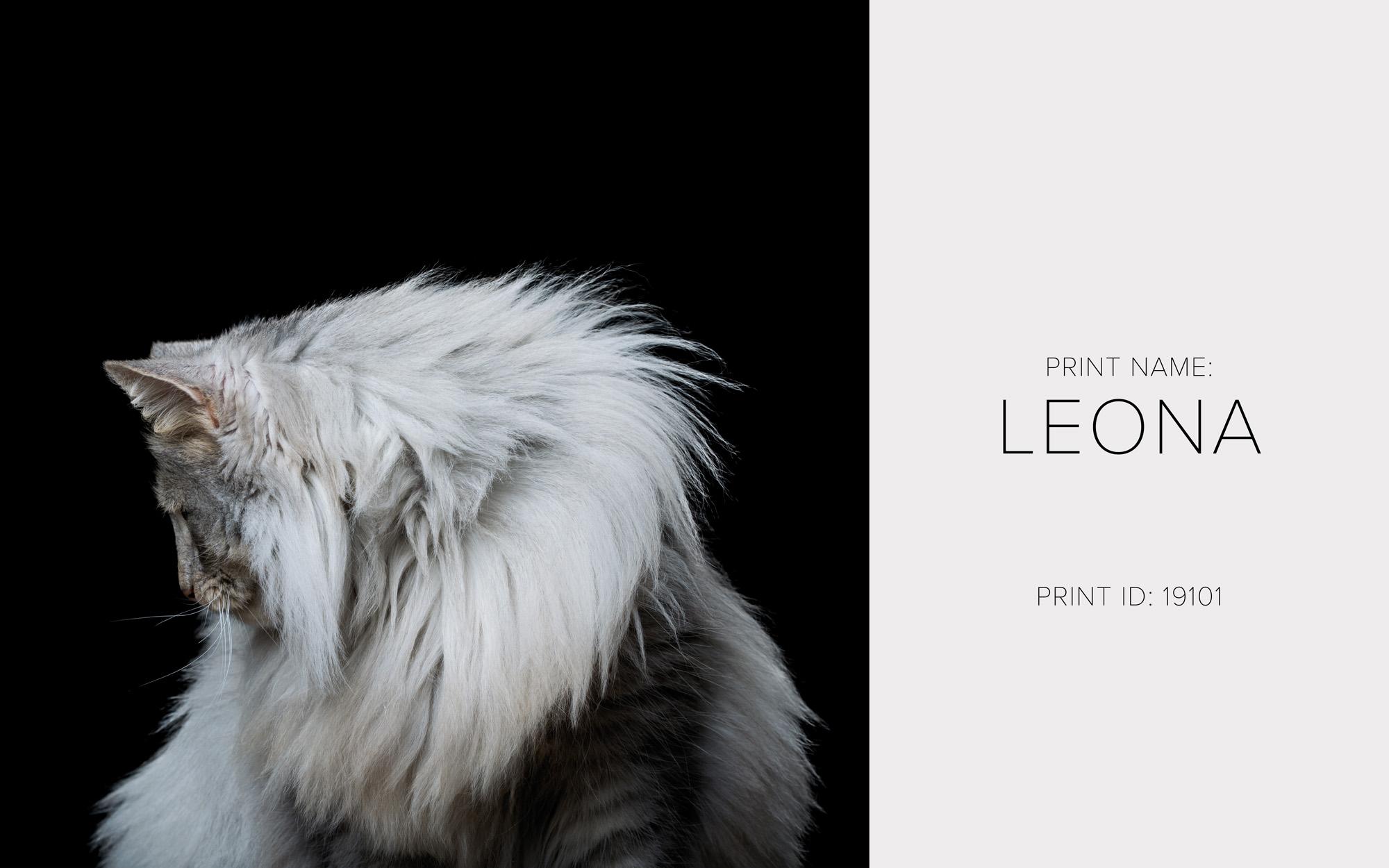 Leona_Print.jpg