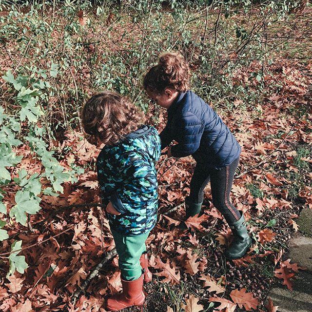 brincando de pescar folhas 🍂 #itsbetteroutside #bettertogether #dutchwayoflife
