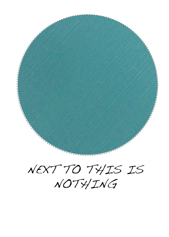 bluey15.jpg