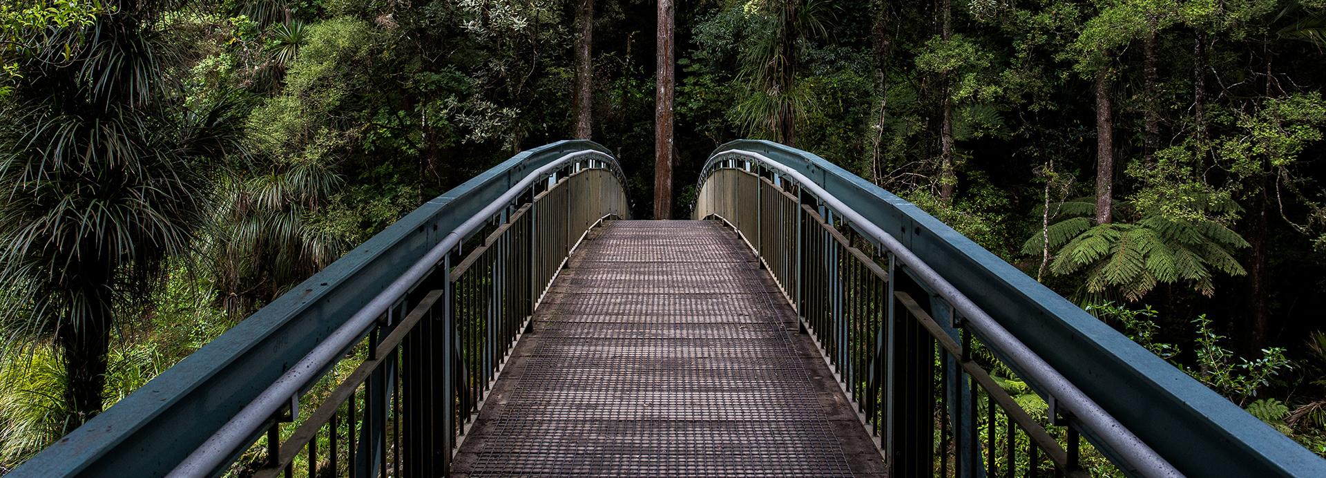 Guardrail 3.jpg