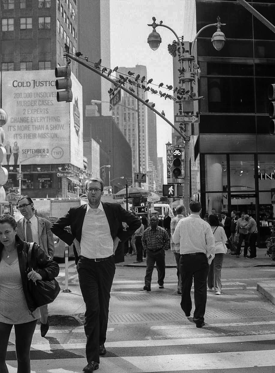 New York 2013074.jpg