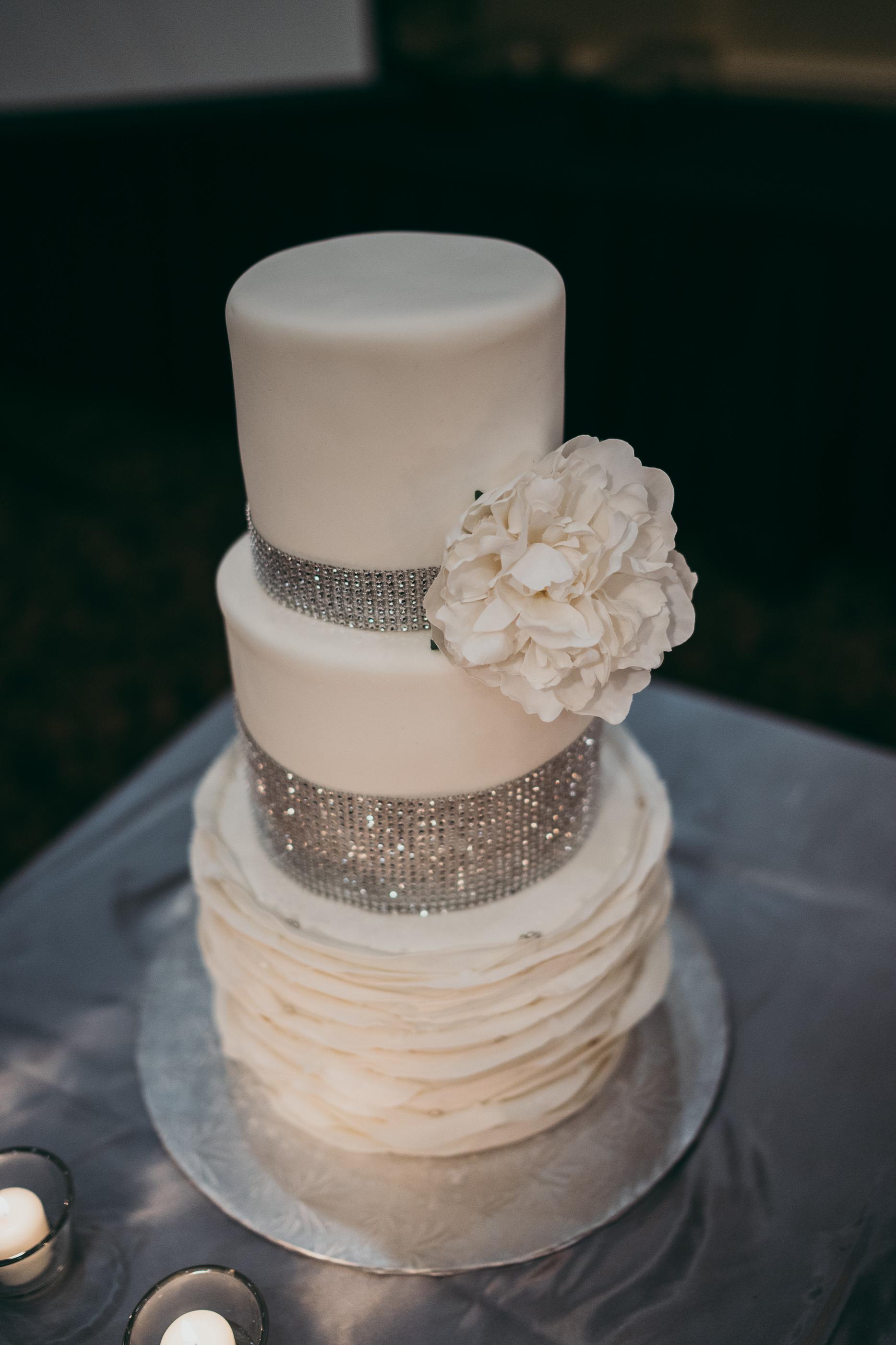 Danielle Michael - Wedding - COJO Photo-1452.jpg
