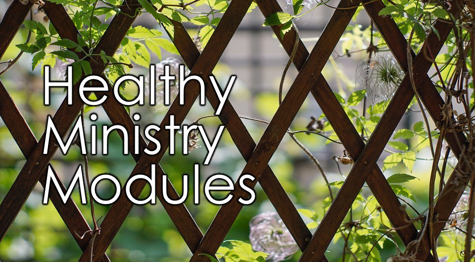 Healthy Ministry Module graphic.jpg