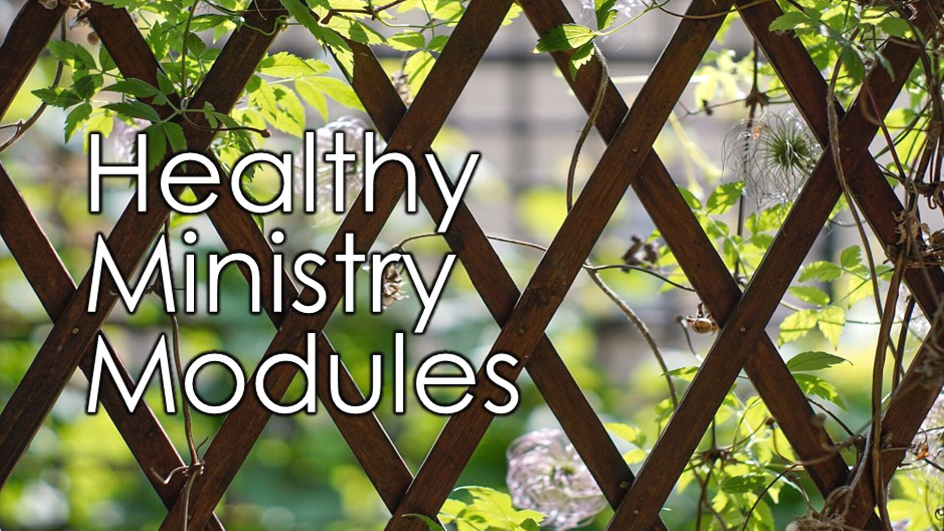 healthy ministry modules web banner.png
