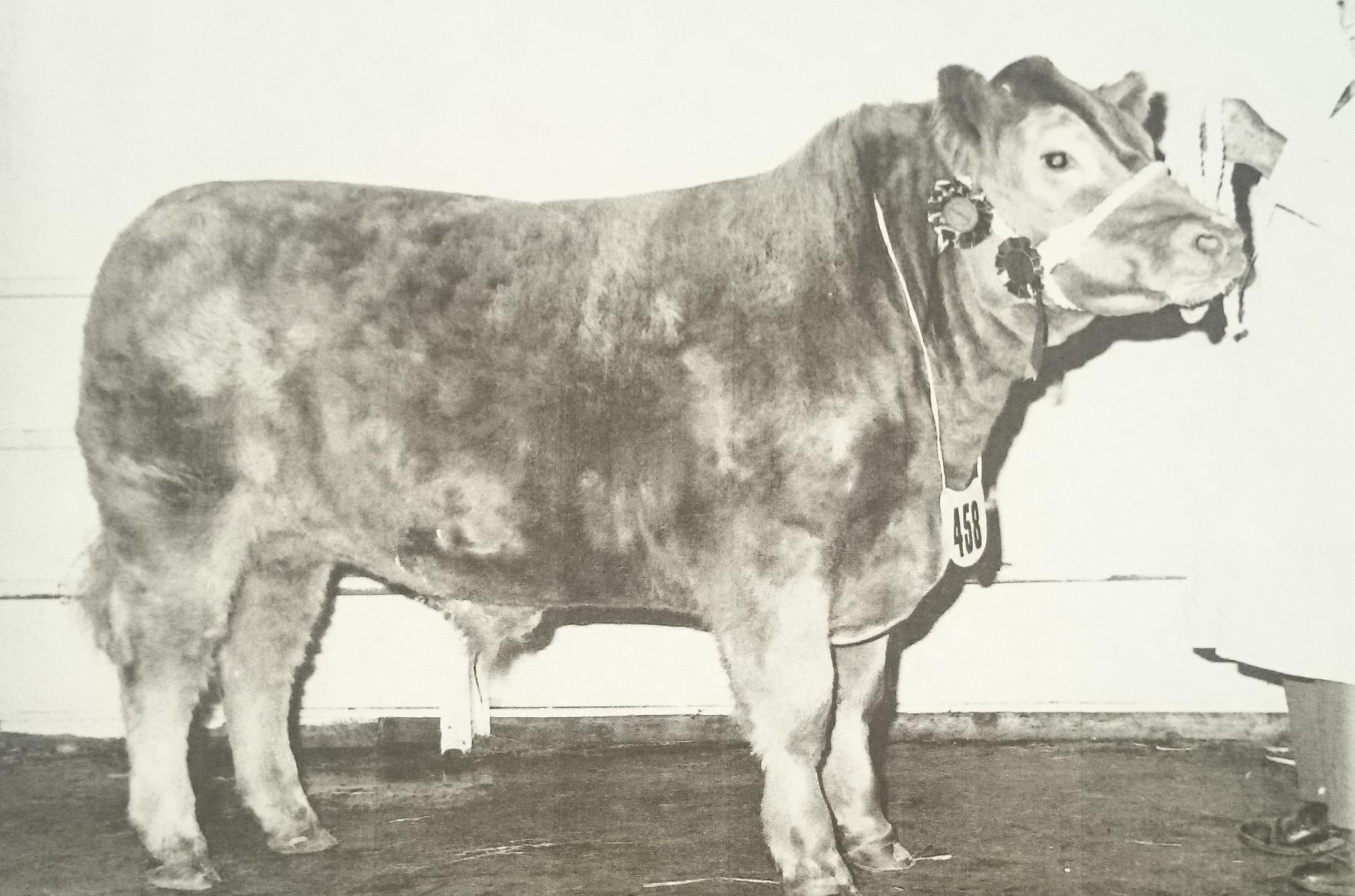 Kojak Smithfield 1975.png