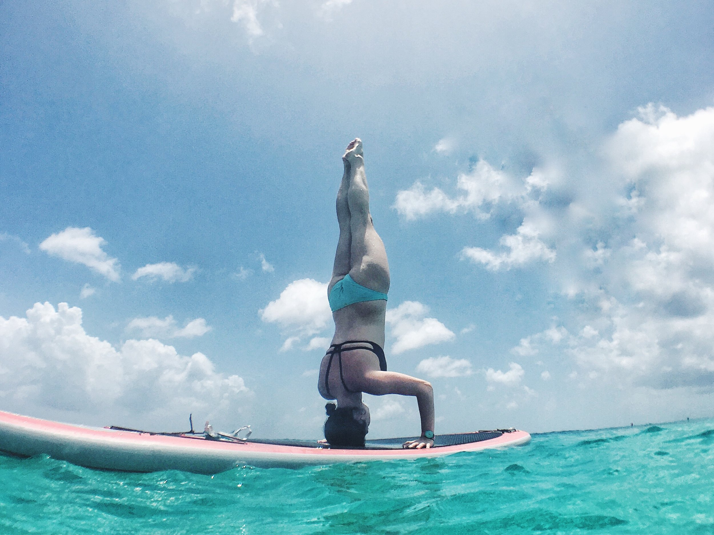 """Cammie R. - New York, NY 