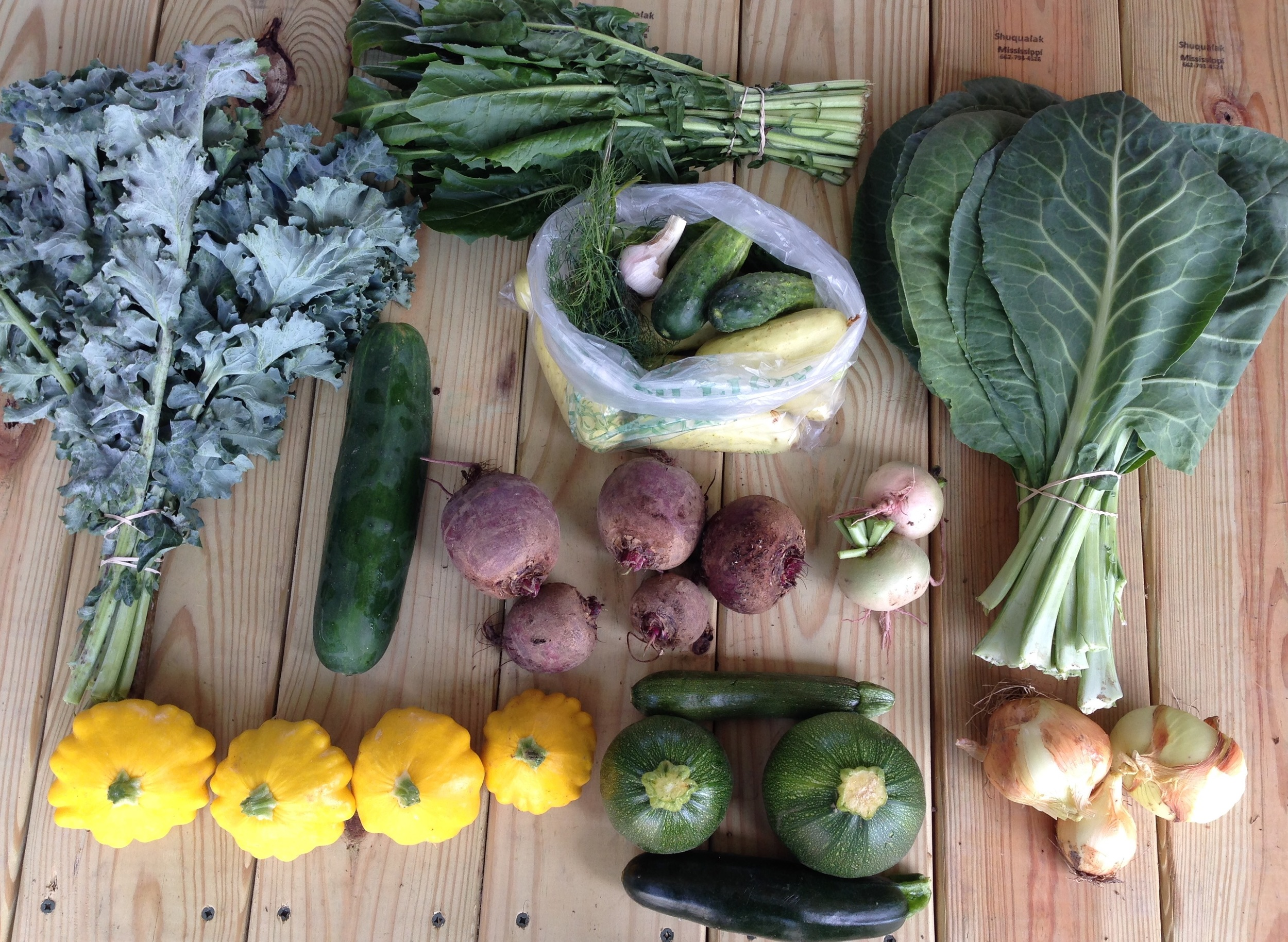 top left to right: kale, dandelion greens, and collards  middle left to right: slicing cucumber, bag of pickling cucumber with dill and garlic, beets, and radish  bottom left to right: yellow patty pan squash, round and straight zucchini, and dried onions