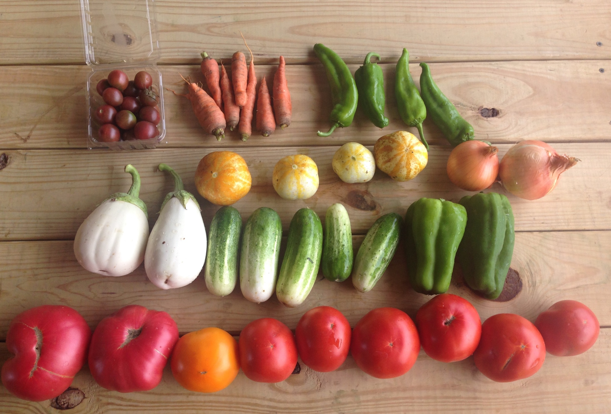 top left to right: cherry tomatoes, carrots, anaheim peppers  middle left to right: eggplant, lemon and pickling cucumbers, onion, bell peppers  bottom left to right: heirloom tomatoes, beefsteaks
