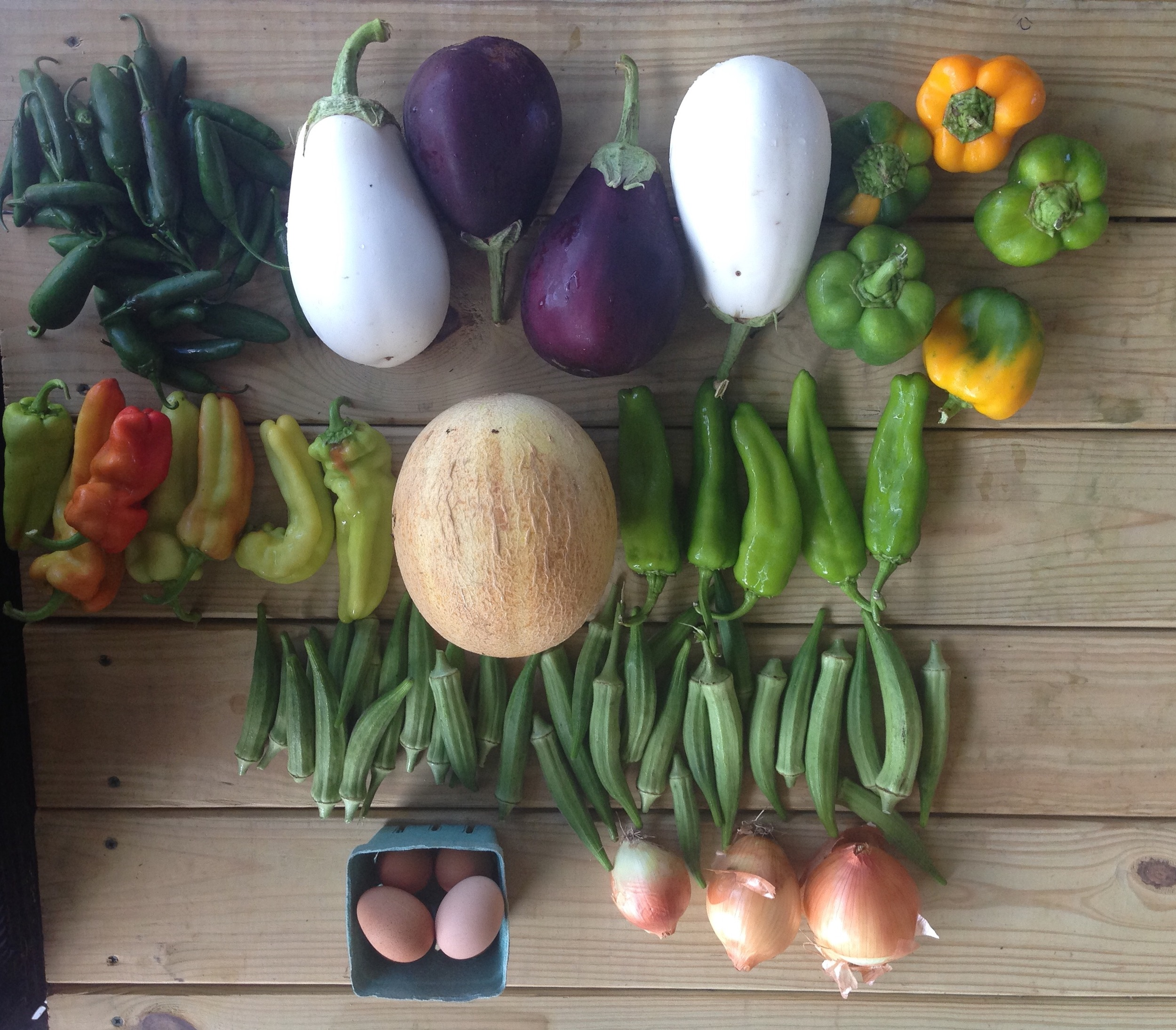 top left to right: hot pepper mix, eggplant, bell peppers  middle left to right: cubanelle peppers, cantaloupe, anaheim peppers  bottom: okra, eggs, onions