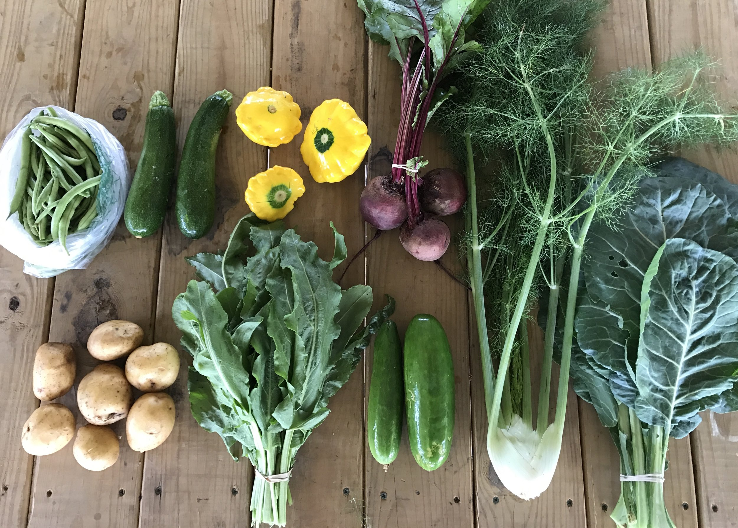Top Row: Bush Beans, Zucchini, Squash, Beets  Bottom Row: Potatoes, Sorrel, Cucumbers, Fennel, Collards