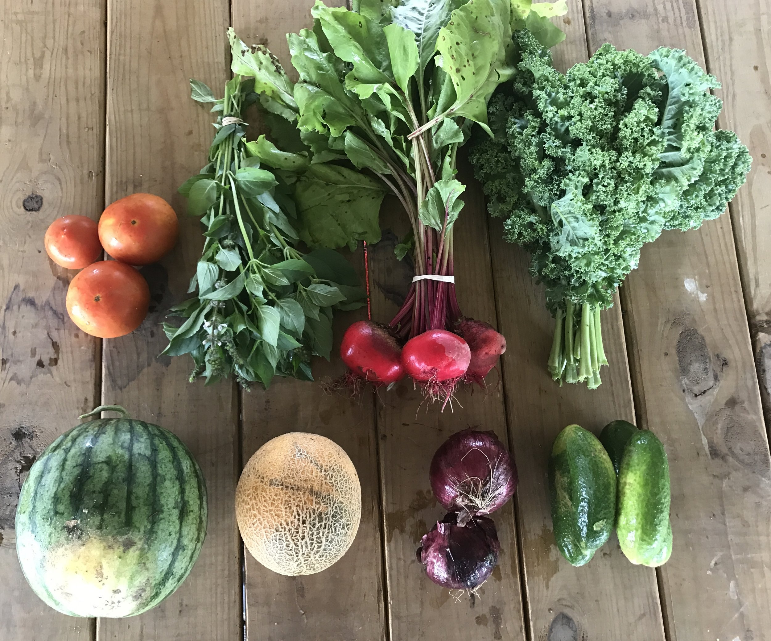 Top Row: Tomatoes, Lemon Basil, Beets, and Curly Kale  Bottom Row: Miniature Watermelon, Miniature Cantaloupe, Cured Onion, and Gherkin Cucumbers