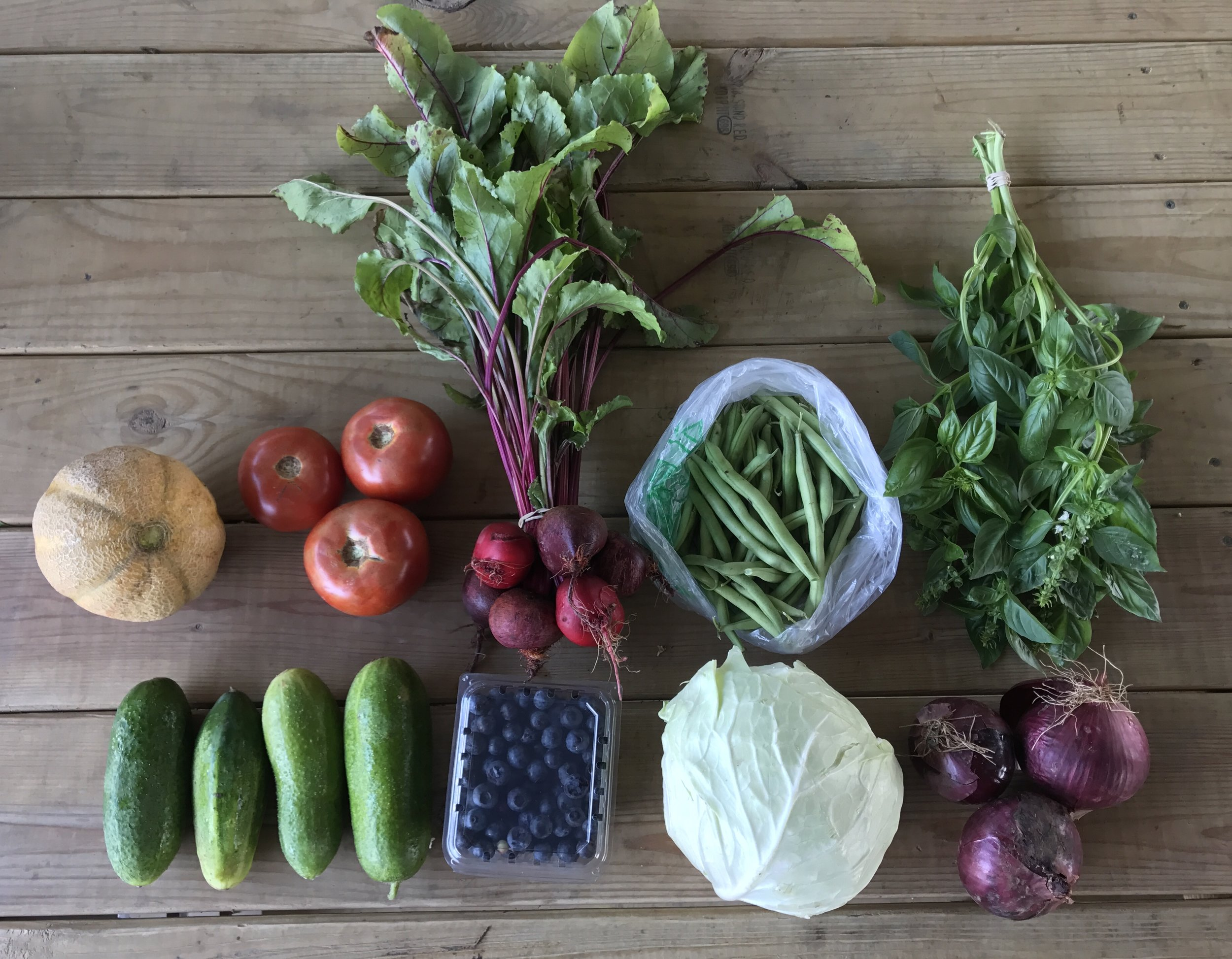 Top Row: Cantaloupe, Tomatoes, Beets, Snap Beans, and Italian Basil.  Bottom Row: Cucumbers, Blueberries, Cabbage, and Onions