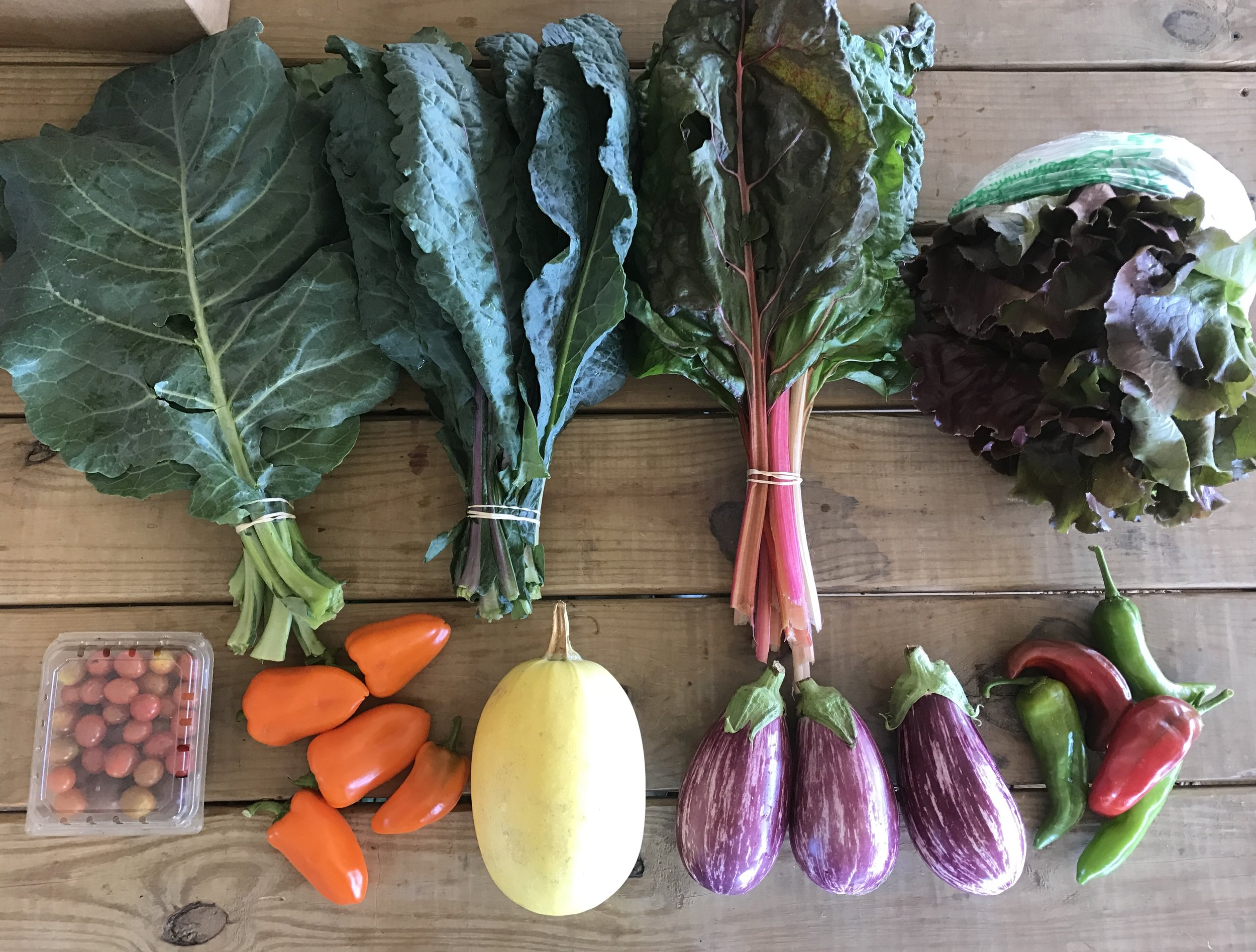 Top Row: Collard Greens, Toscano (Dino) Kale, Swiss Chard, and Field Grown Lettuce  Bottom Row: Cherry Tomatoes, Sweet Orange Peppers, Spaghetti Squash, Eggplant, and Anaheim Peppers