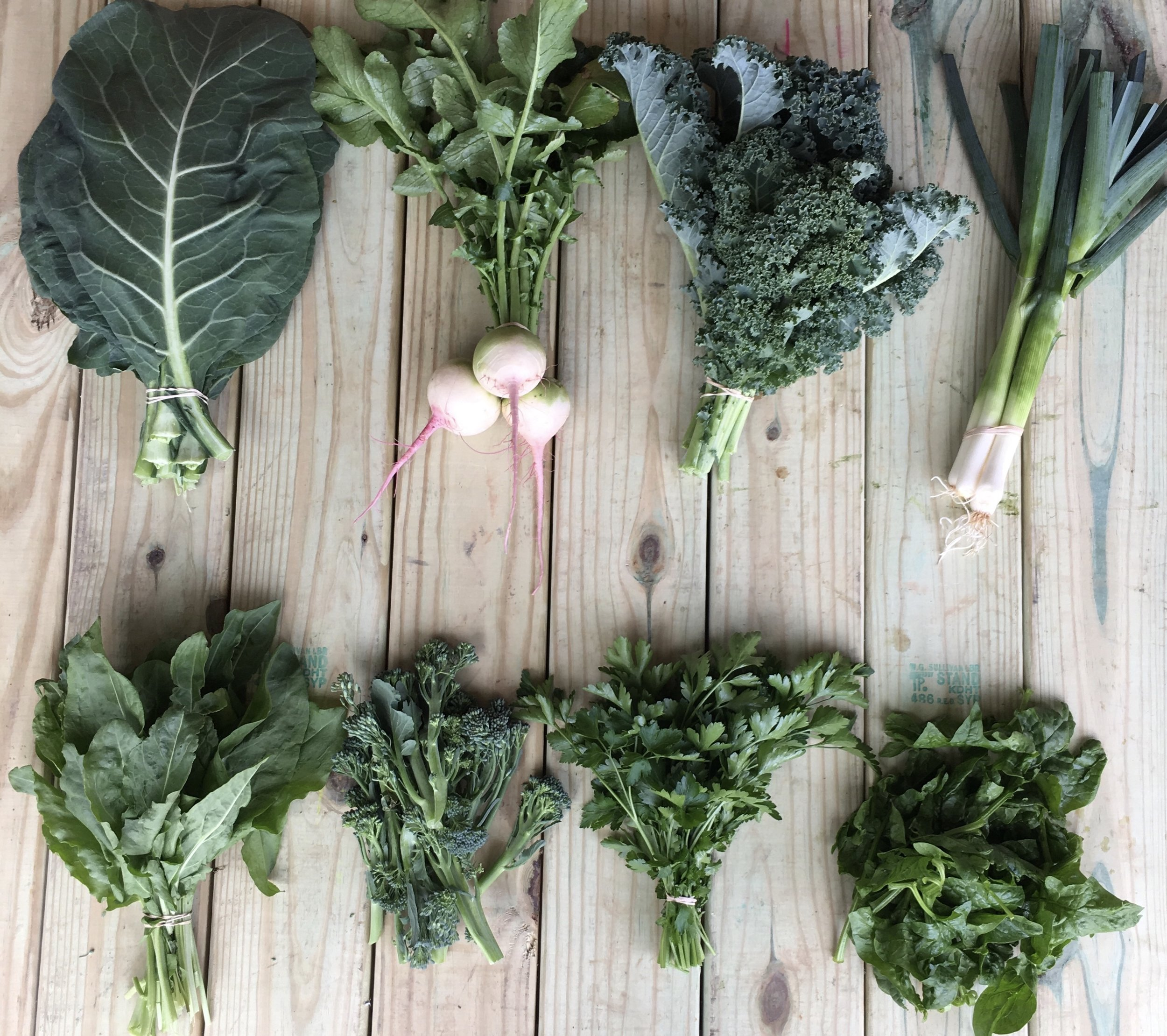 Top row left to right: Collards, Watermelon Radishes, Curly Kale, and Leeks  Bottom row left to right: Sorrel, Broccolini, Parsley, and Spinach