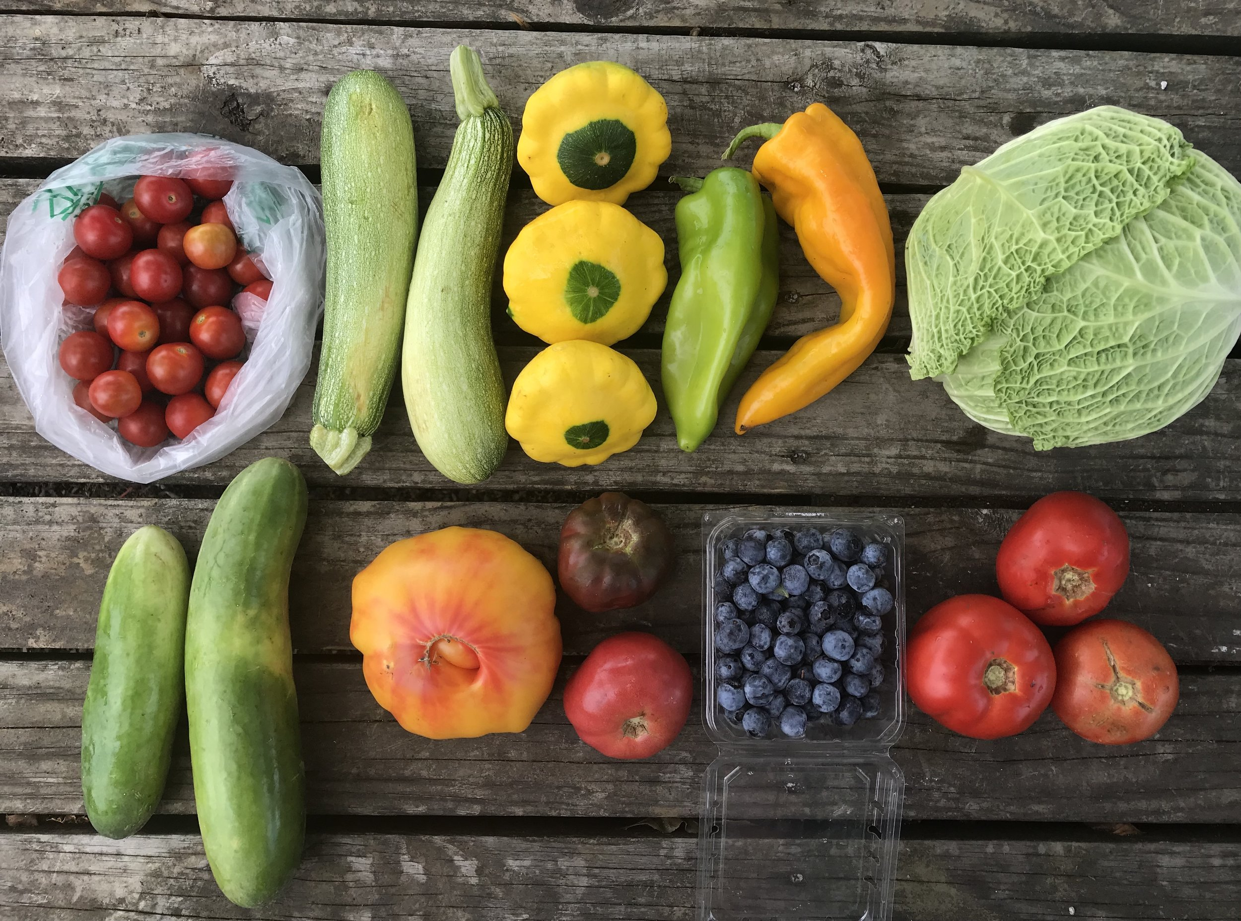 Top Row: Cherry Tomatoes, Zucchini, Squash, Sweet Peppers, and Savoy or Green Cabbage  Bottom Row: Cucumbers, Heirloom Tomatoes, Blueberries, and Beefsteak Tomatoes