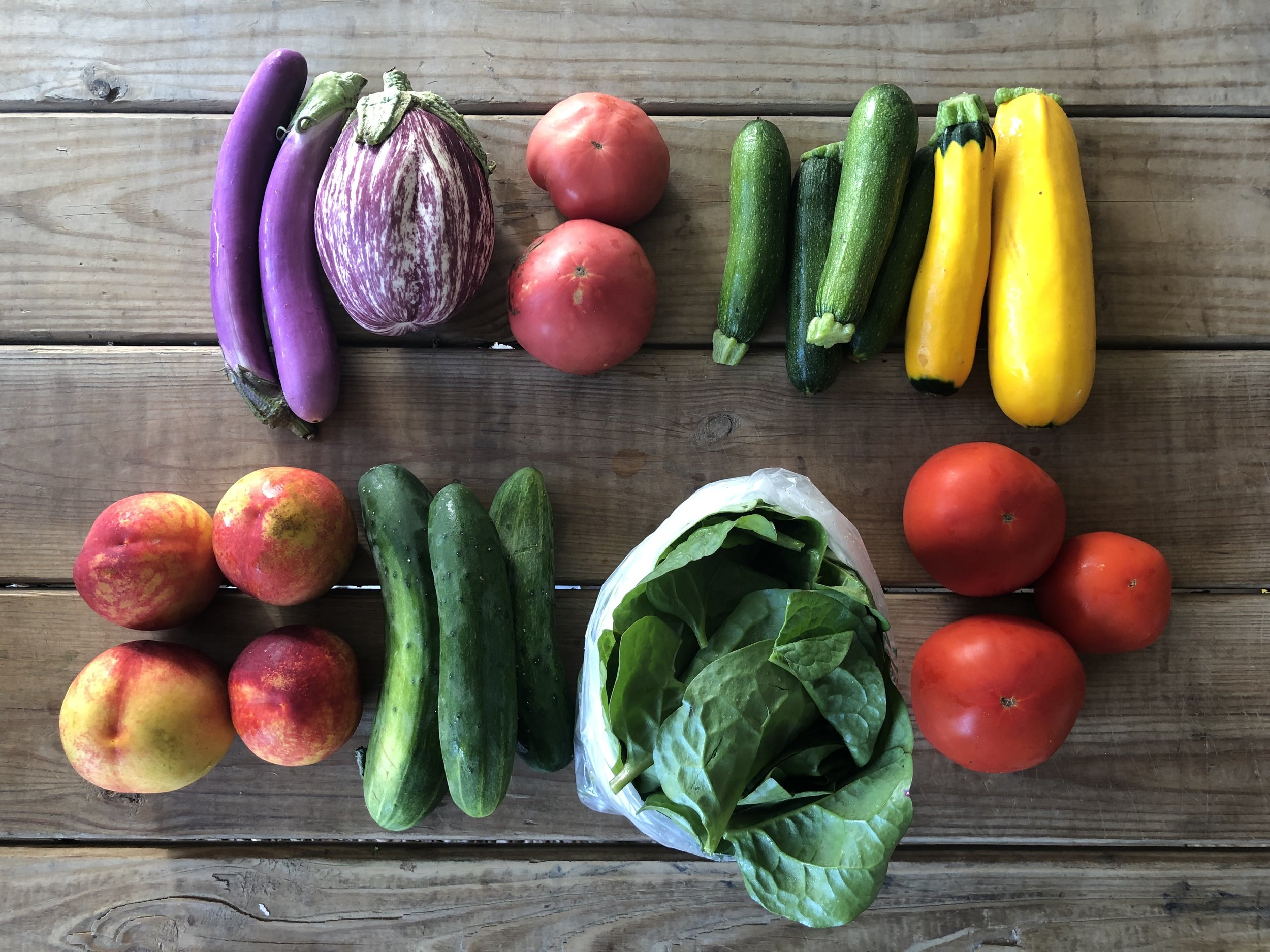 Top Row: Eggplant, Heirloom Tomatoes, Zucchini and Squash  Bottom Row: Nectarines, Cucumbers, Malabar Spinach, and Beefsteak Tomatoes