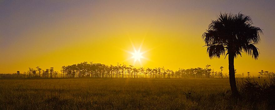 Foggy-Sunrise-Sable-02.jpg