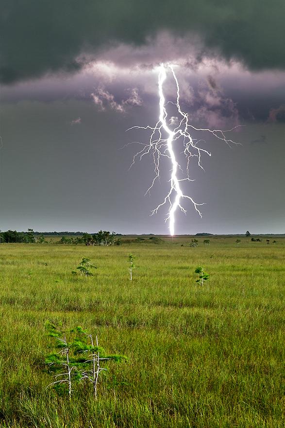 Everglades-Lightning-01.jpg