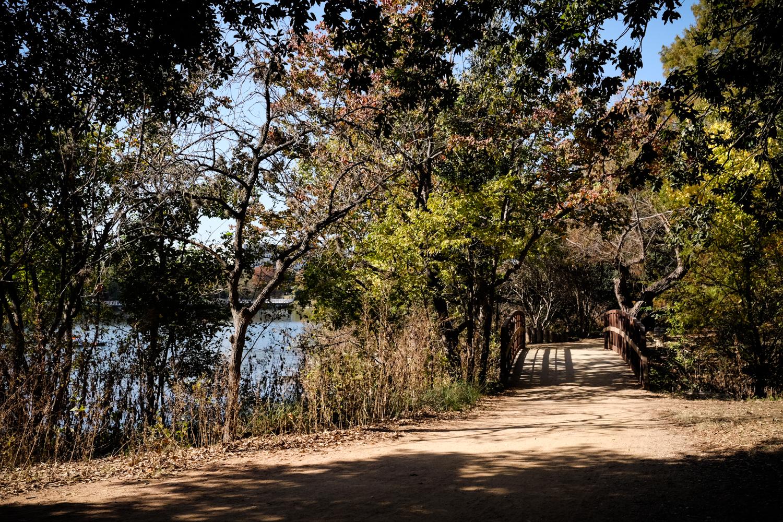Scout-Town_Lake_35-WC-_DSF715971592017.jpg