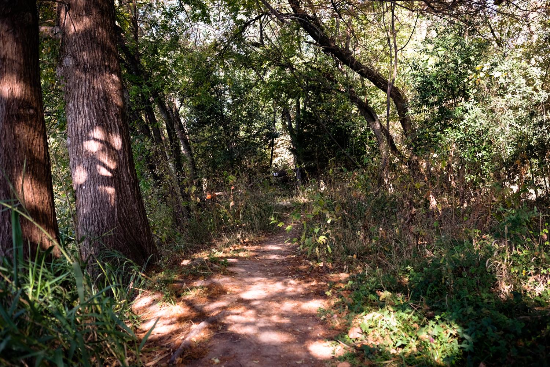 Scout-Town_Lake_35-WC-_DSF719471942017.jpg
