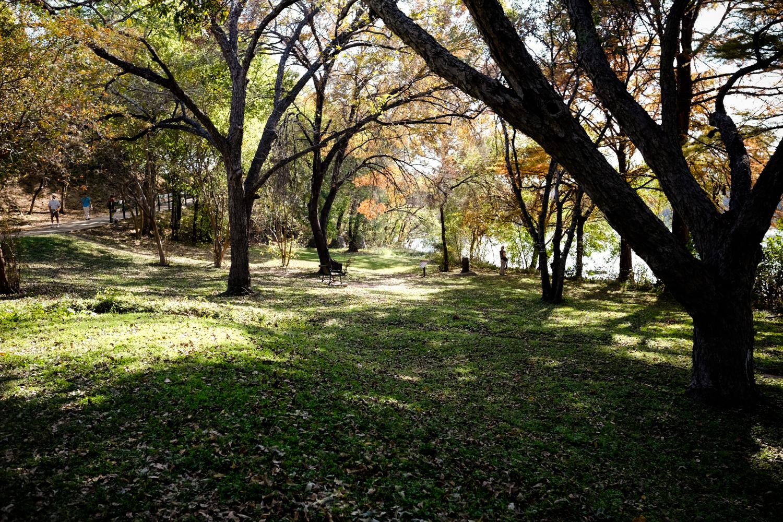 Scout-Town_Lake_35-WC-_DSF725272522017.jpg