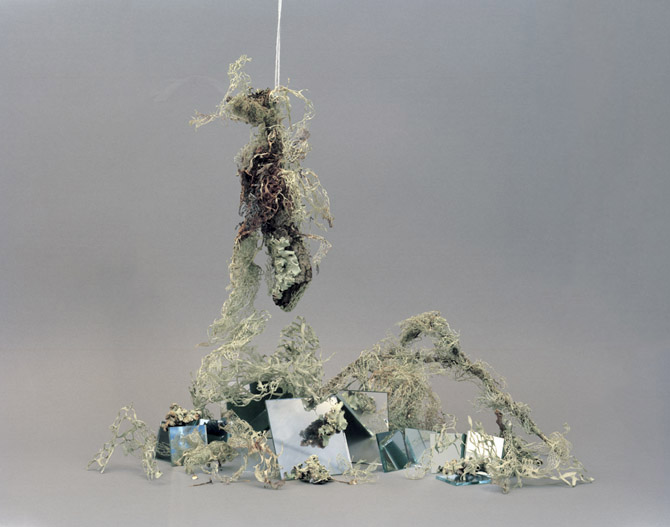 Hanging Moss and Mirrors, 2009