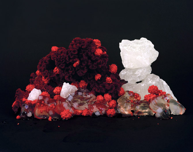 Liquifying Jellies with Dried Crested Flower, 2009