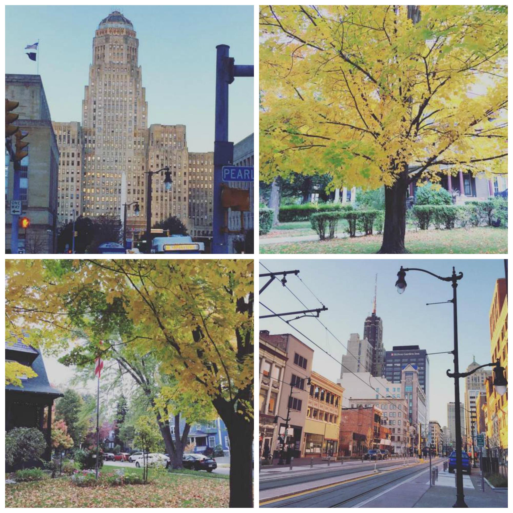 Downtown Buffalo + Elmwood Village