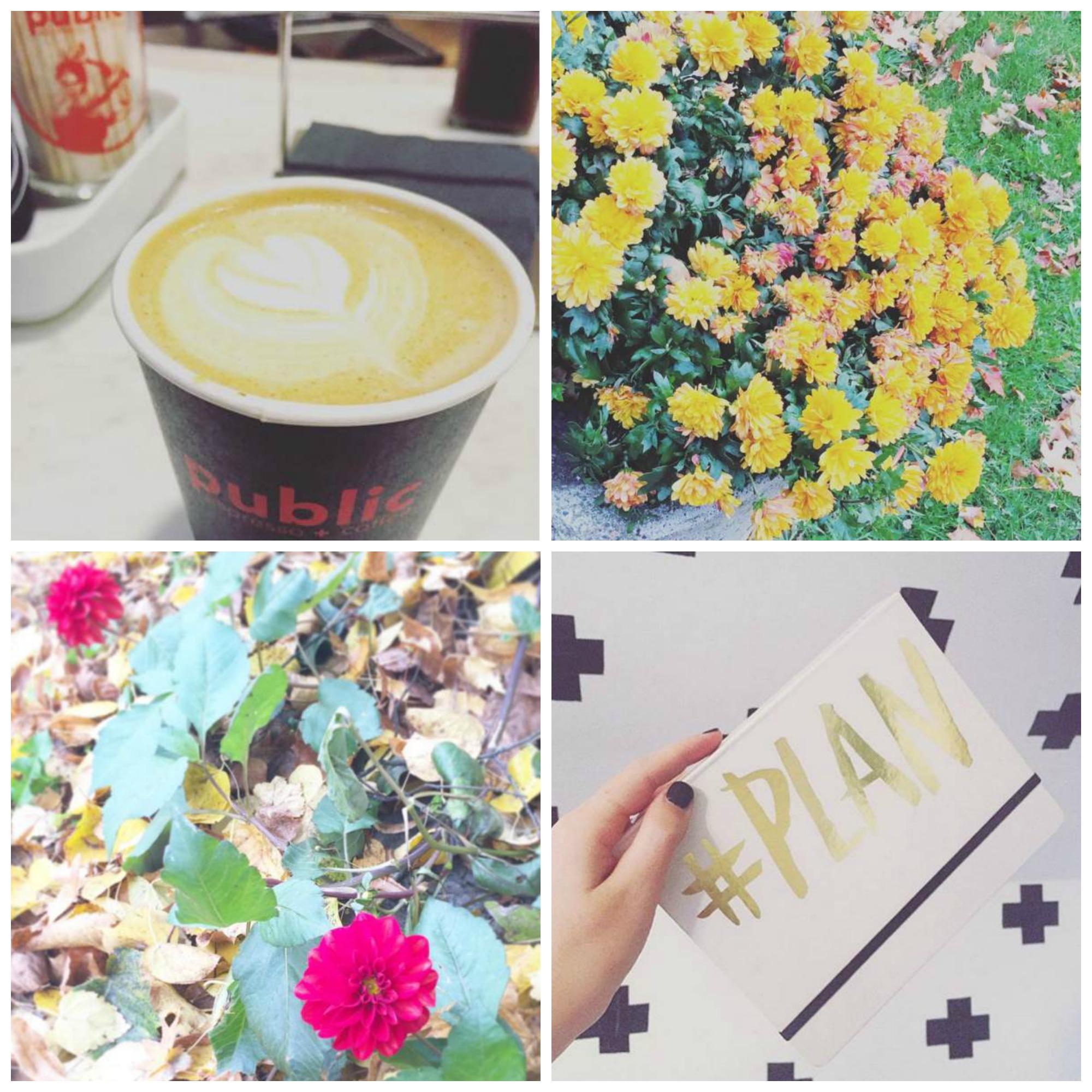 Coffee:  Public Espresso  Journal:  A Beautiful Mess