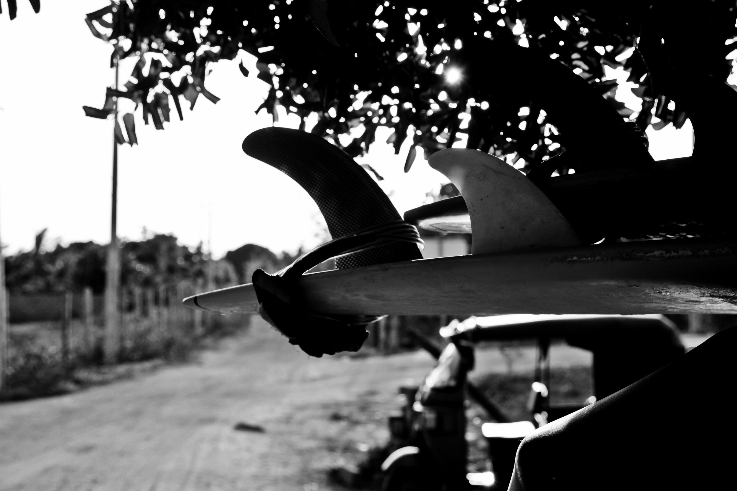 surfboard fin.jpg