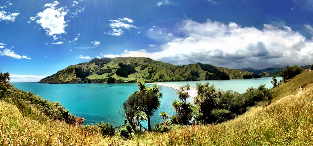 Cable Bay, my backyard, home, bliss.
