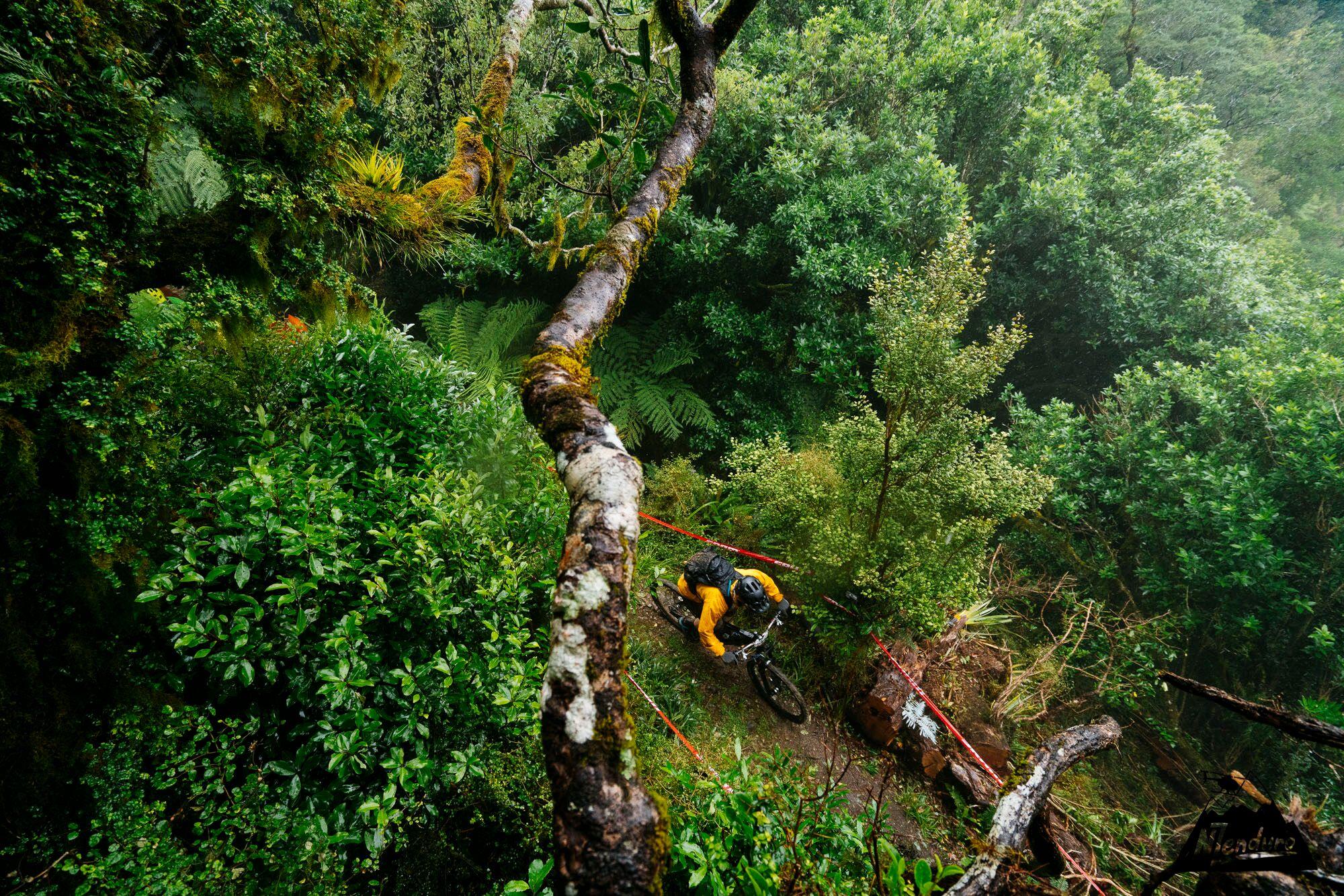 NZENDURO_Saturday-9922_previewdunc.jpg