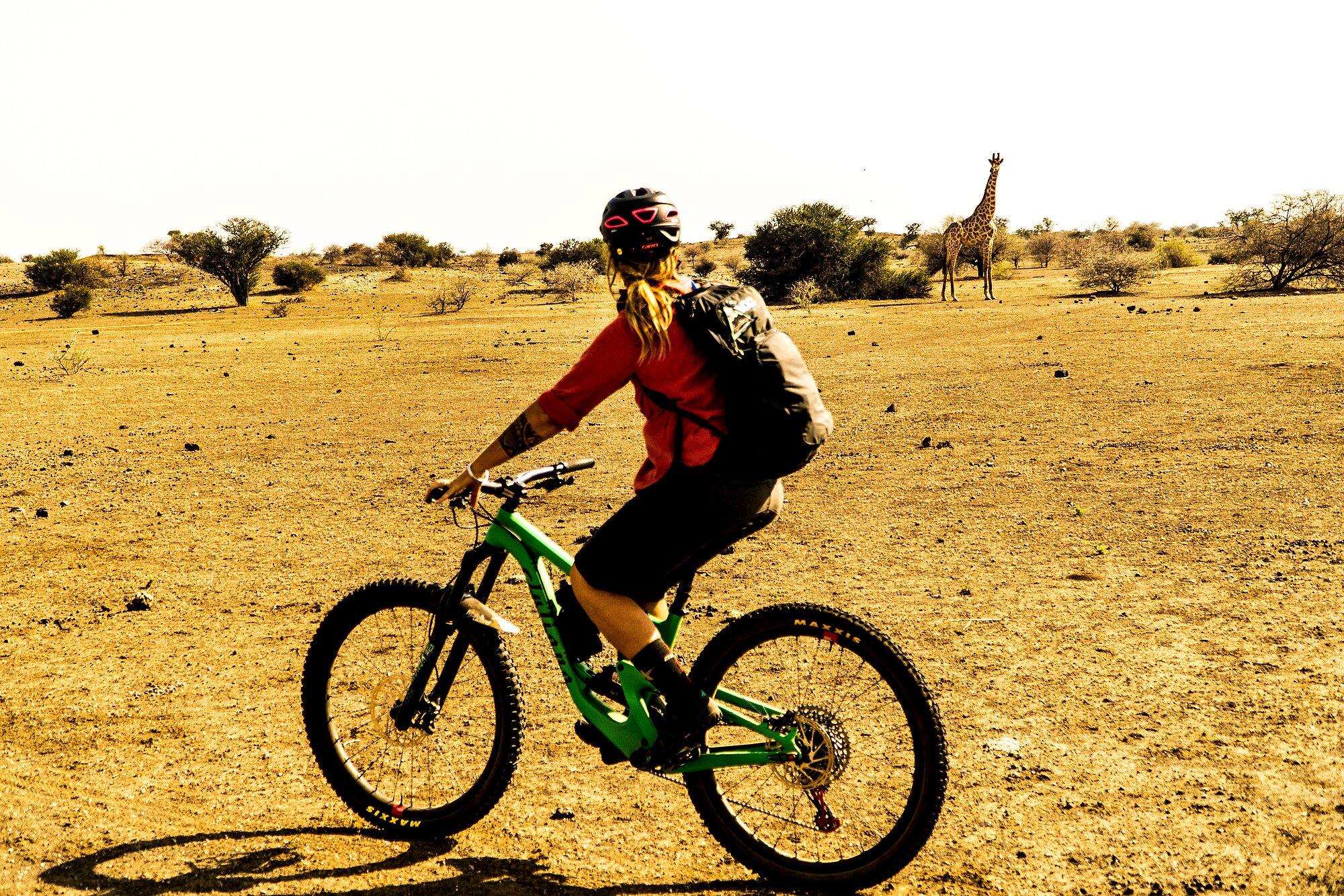 SoultrailsBotswana_DSC9139_preview.jpg