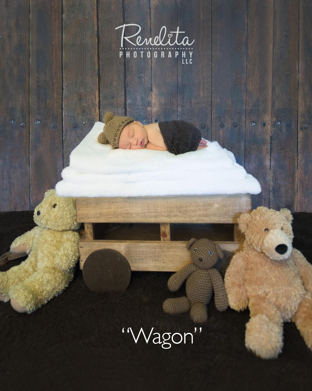 Labelled wagon.jpg