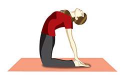 Bridge pose Lung Cleansing Yoga (1).jpg