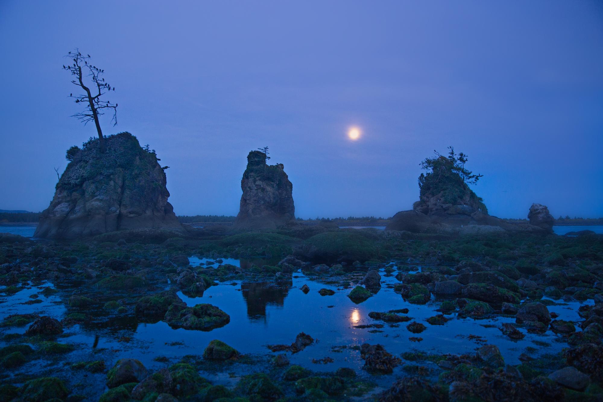 IMG_9770full moon by the sea stacks.jpg