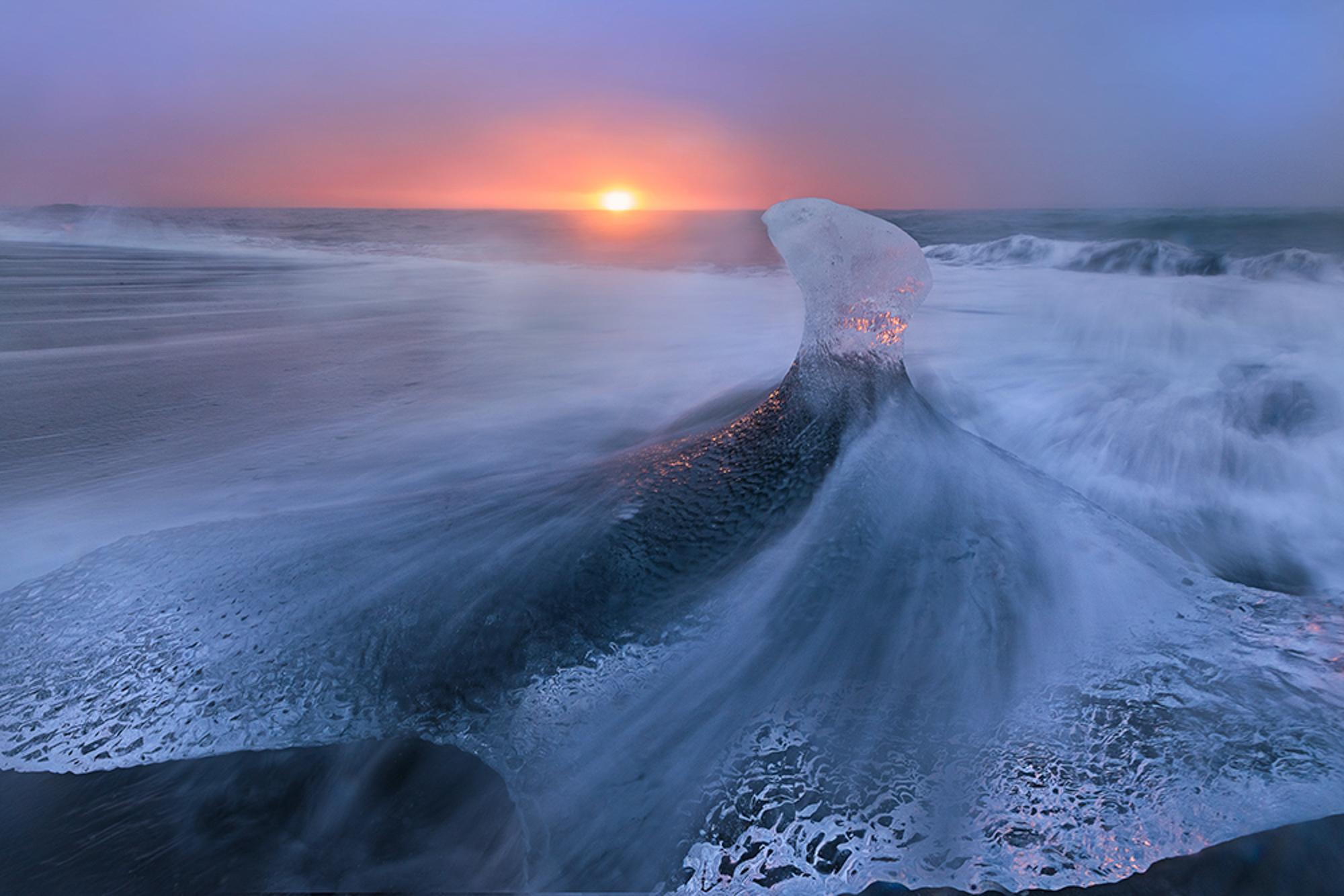 The Ice Phoenix.jpg