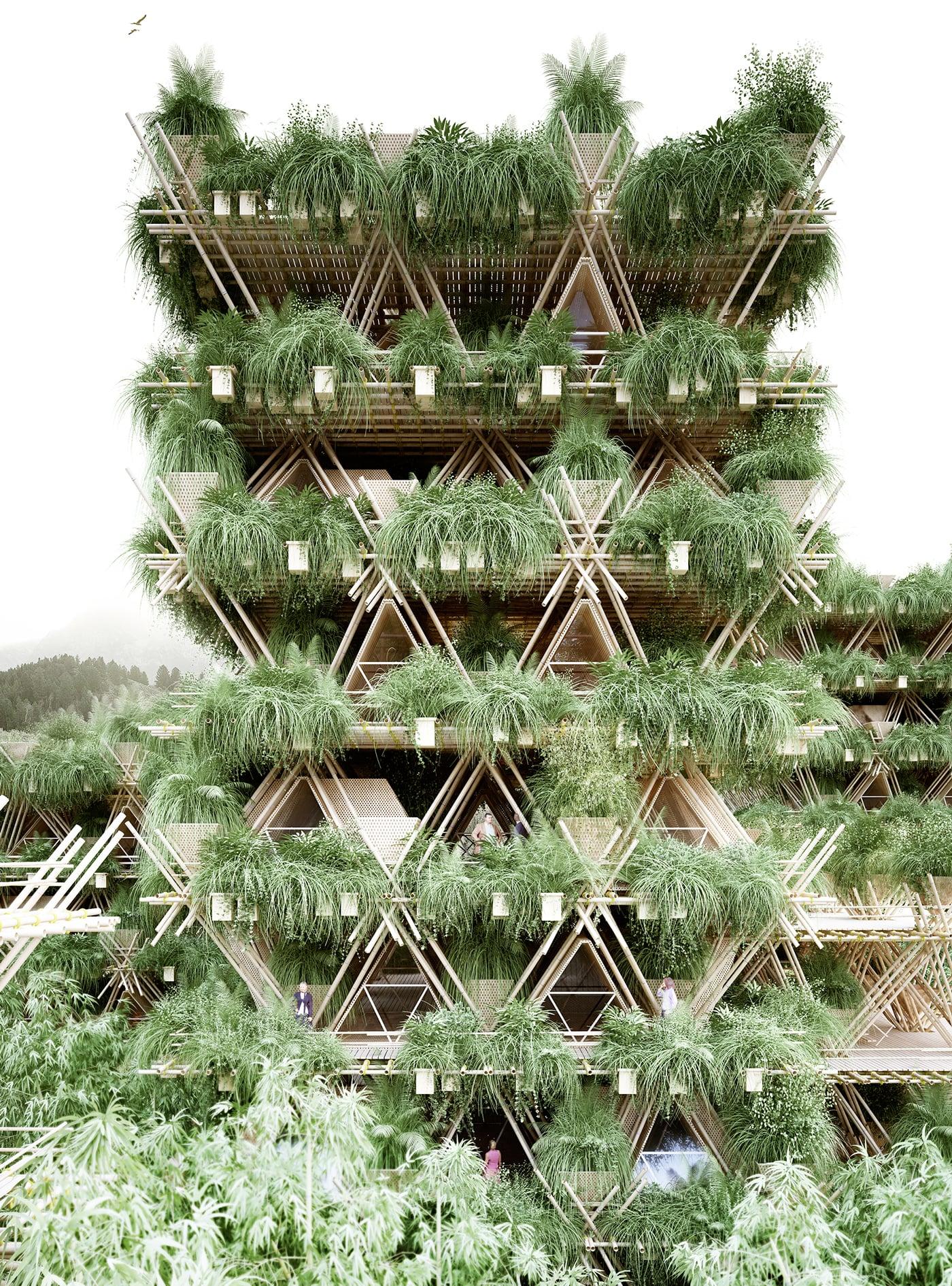 Rising Canes by Chris Precht – Austria