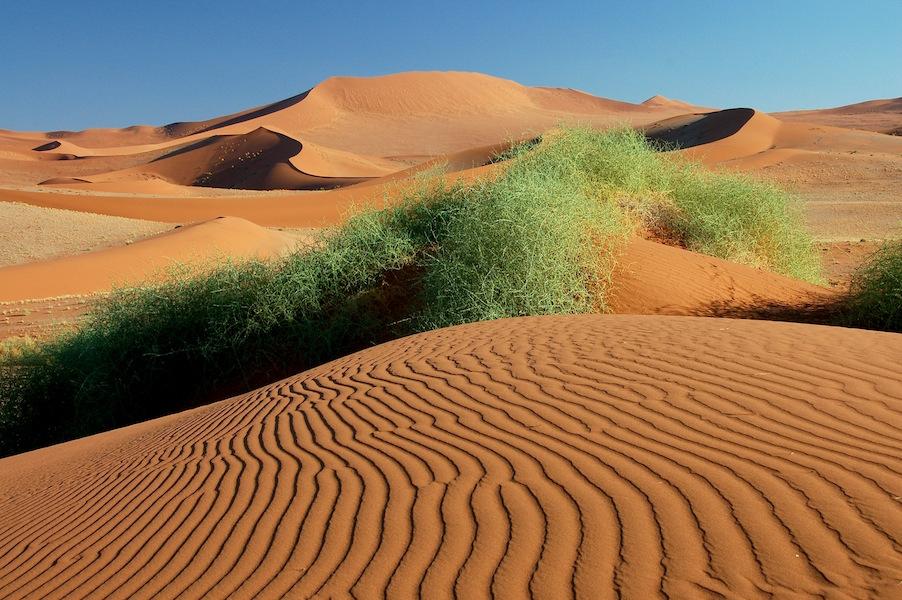 Namib Dunes, Sossusvlei 2.jpg