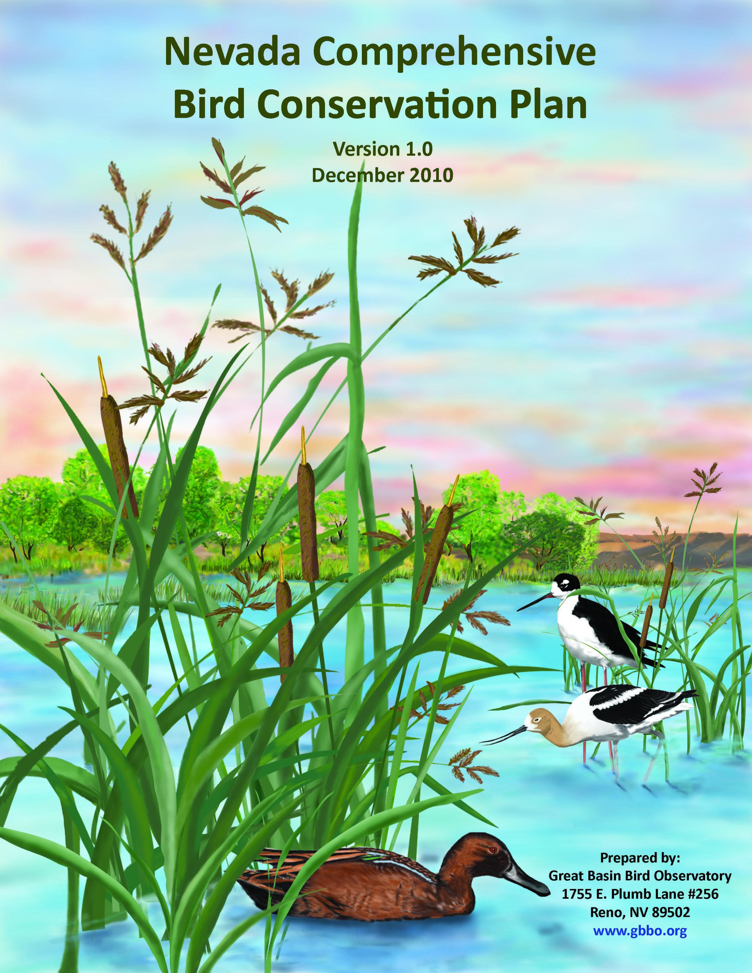 Nevada Comprehensive Bird Conservation Plan