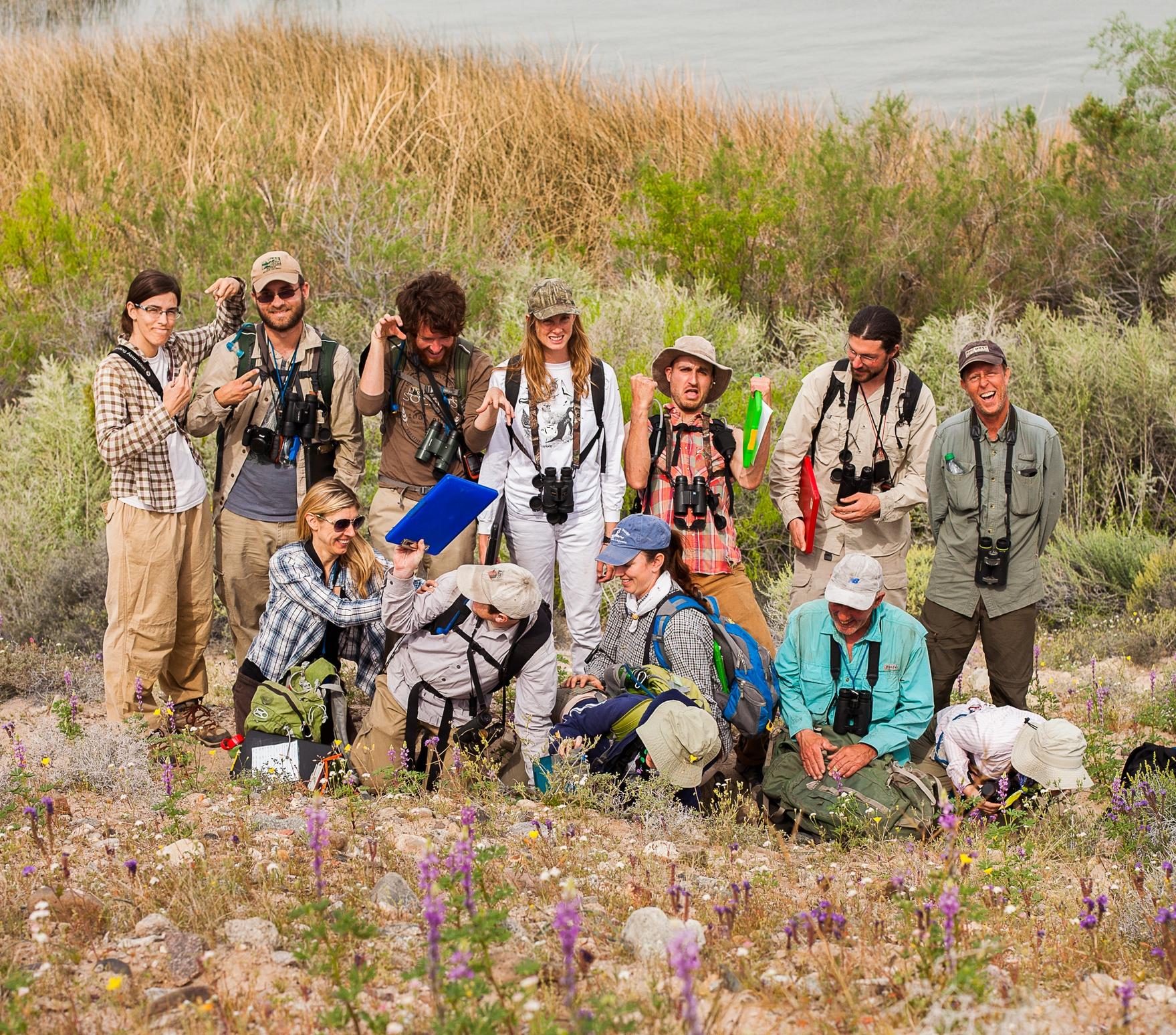Lower Colorado River Riparian Surveys